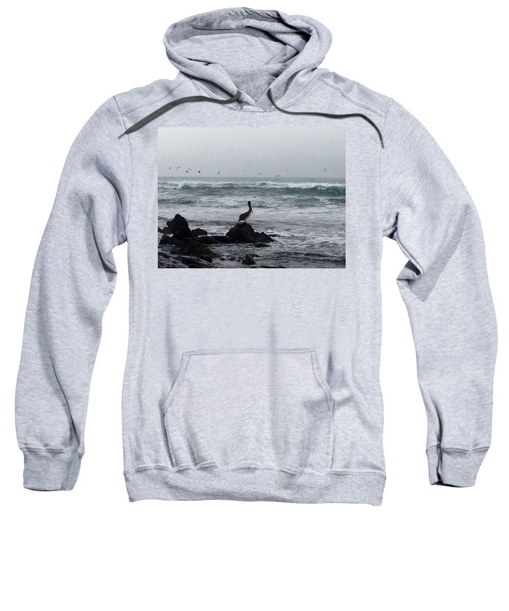Ocean Sweatshirt featuring the photograph Solo Pelican by Aprelle Pierce