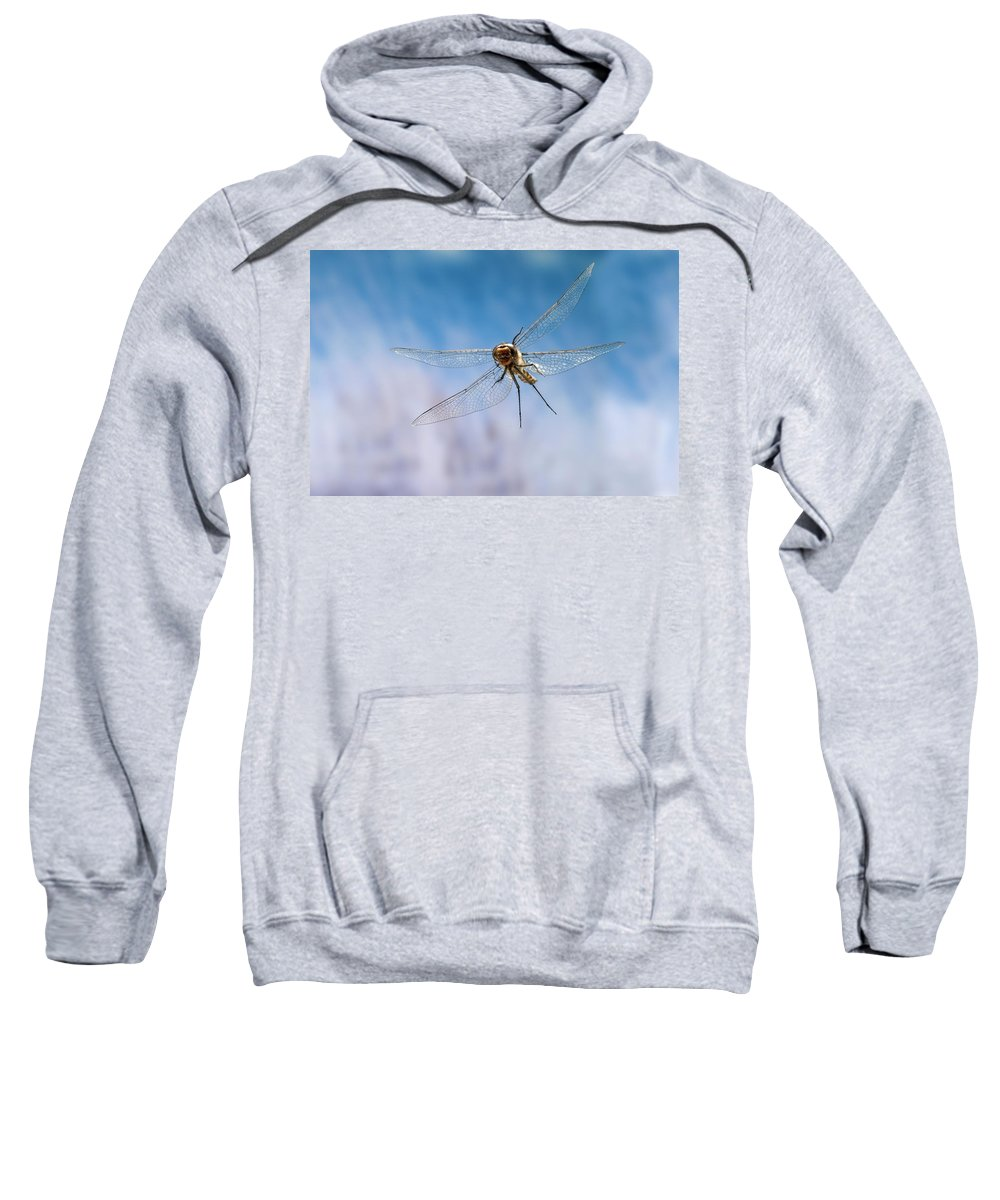 Approaching Sweatshirt featuring the photograph Spiny Baskettail Epitheca Spinigera by Michael Durham