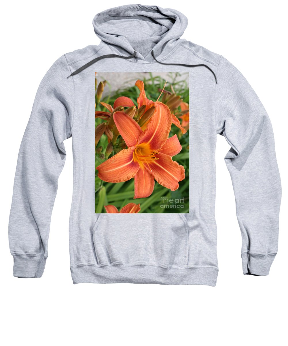 Lilies Sweatshirt featuring the photograph Splendid Day Lily by Christiane Schulze Art And Photography