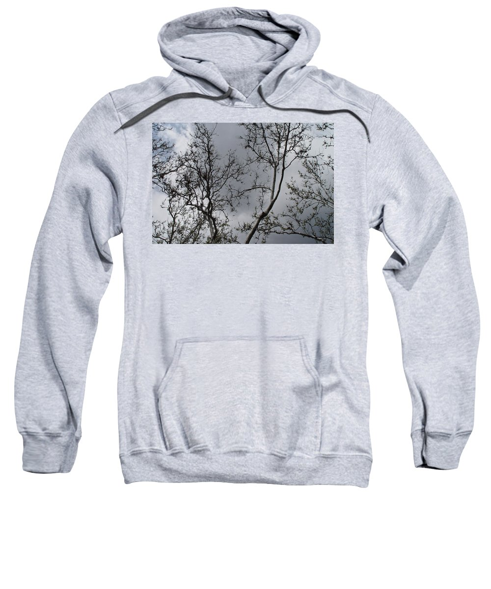 Nature Sweatshirt featuring the photograph Spring Clouds by Noa Mohlabane