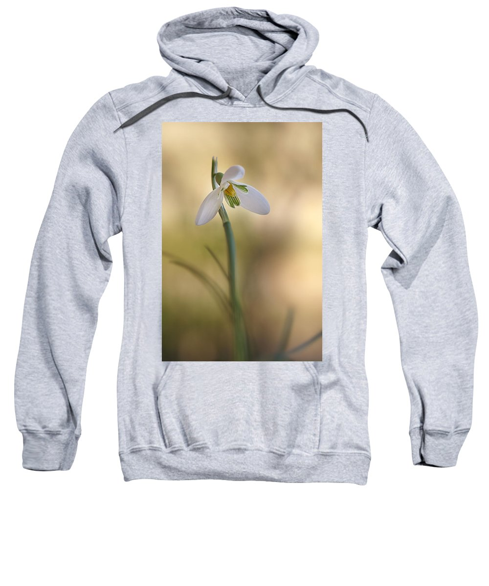 Flower Sweatshirt featuring the photograph Spring Messenger by Annie Snel