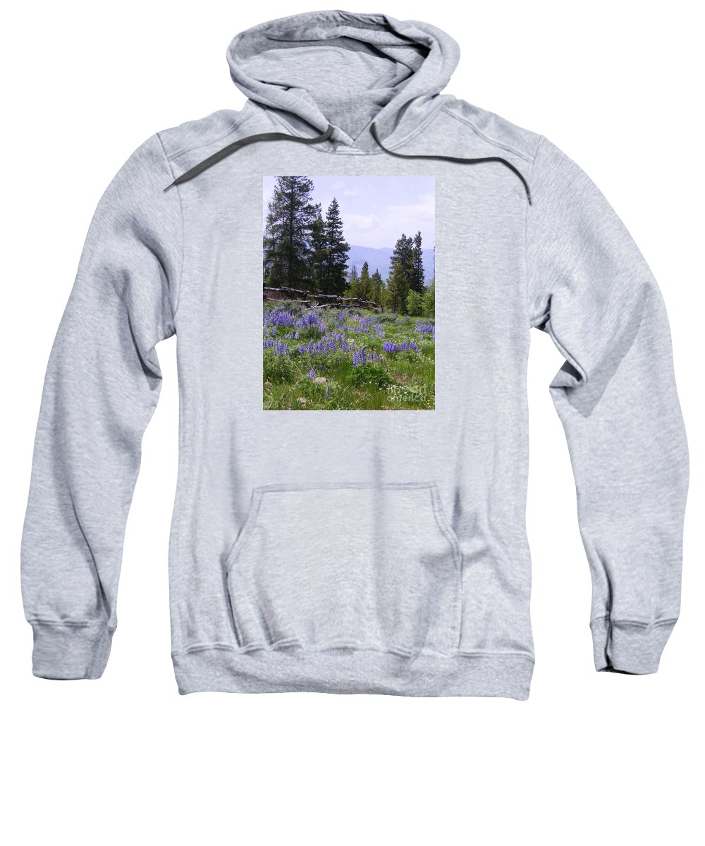 Mountains Sweatshirt featuring the photograph Spring Mountain Lupines by Crystal Miller