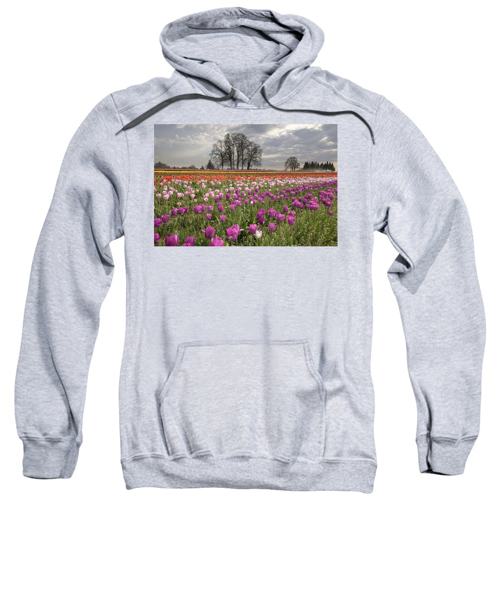 Tulips Sweatshirt featuring the photograph Springtime At Tulip Farm by Jit Lim