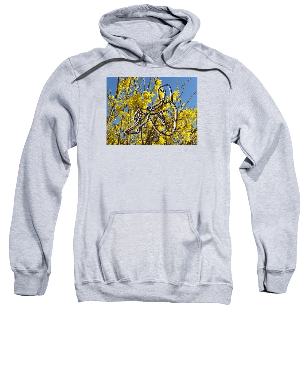 Nude Sweatshirt featuring the photograph Springtime by Patrick J Murphy