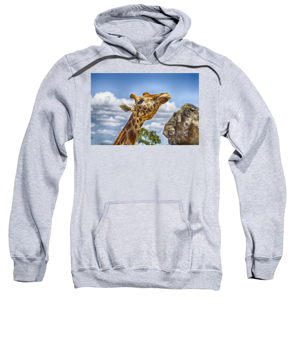 Giraffe Sweatshirt featuring the photograph Standing Tall V3 by Douglas Barnard