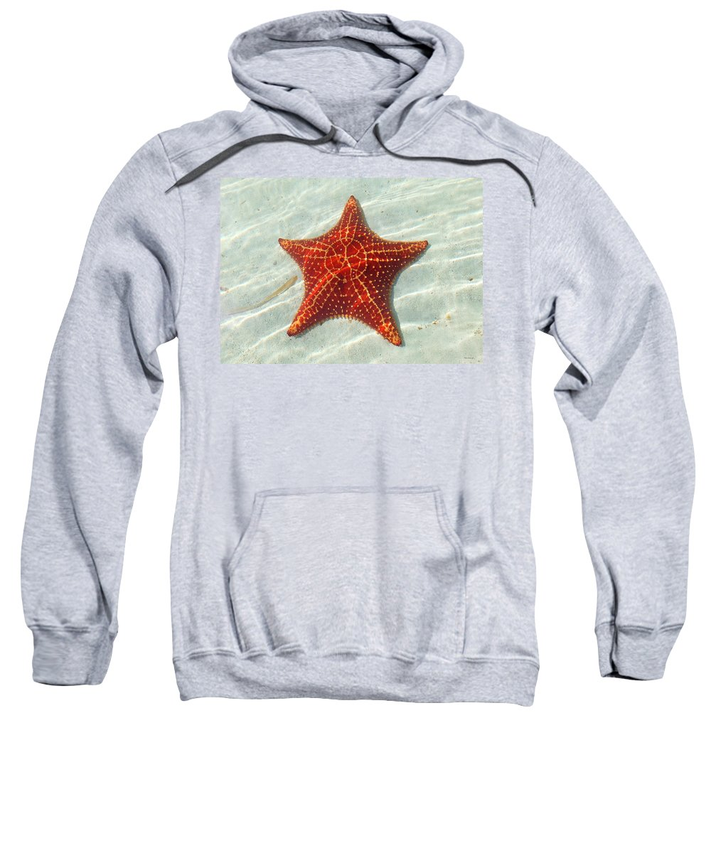 Duane Mccullough Sweatshirt featuring the photograph Starfish 3 Of Bottom Harbour Sound by Duane McCullough