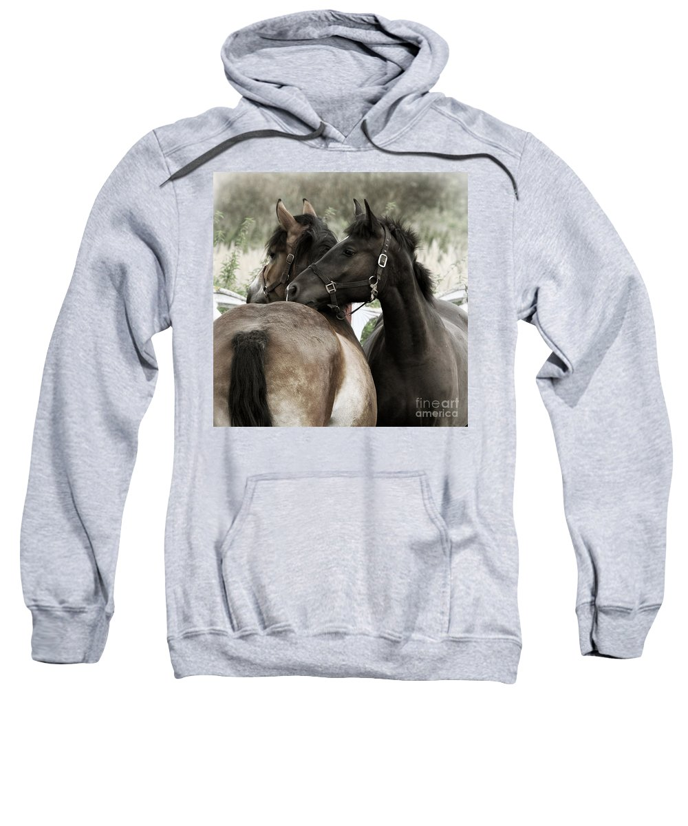 Valentines Sweatshirt featuring the photograph Staying Together by Angel Tarantella