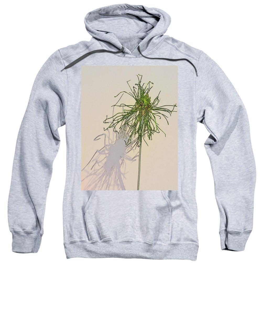 Allium Sweatshirt featuring the photograph Summers Shadow by Randy J Heath