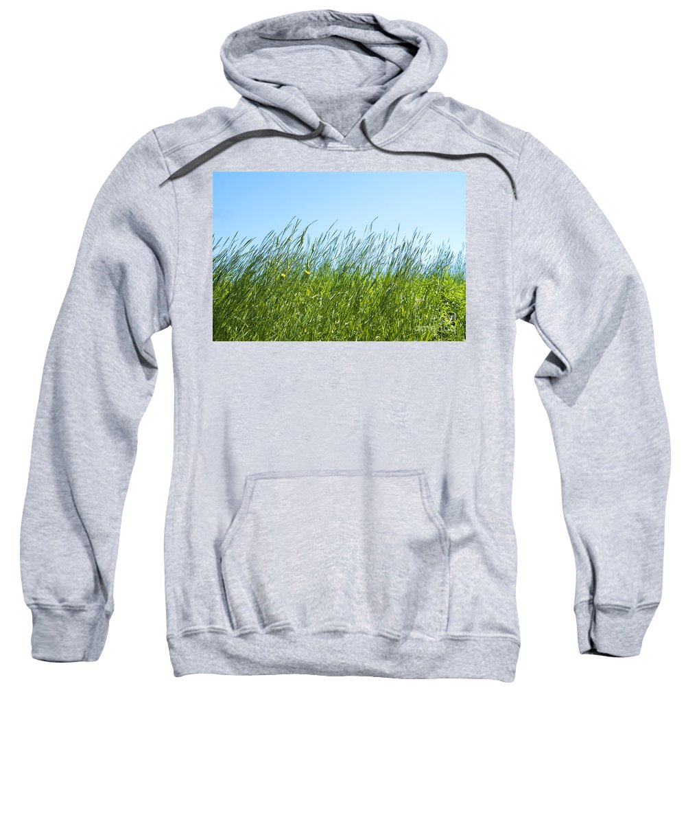 Summer Sweatshirt featuring the photograph Summertime Grass by Thomas Firak