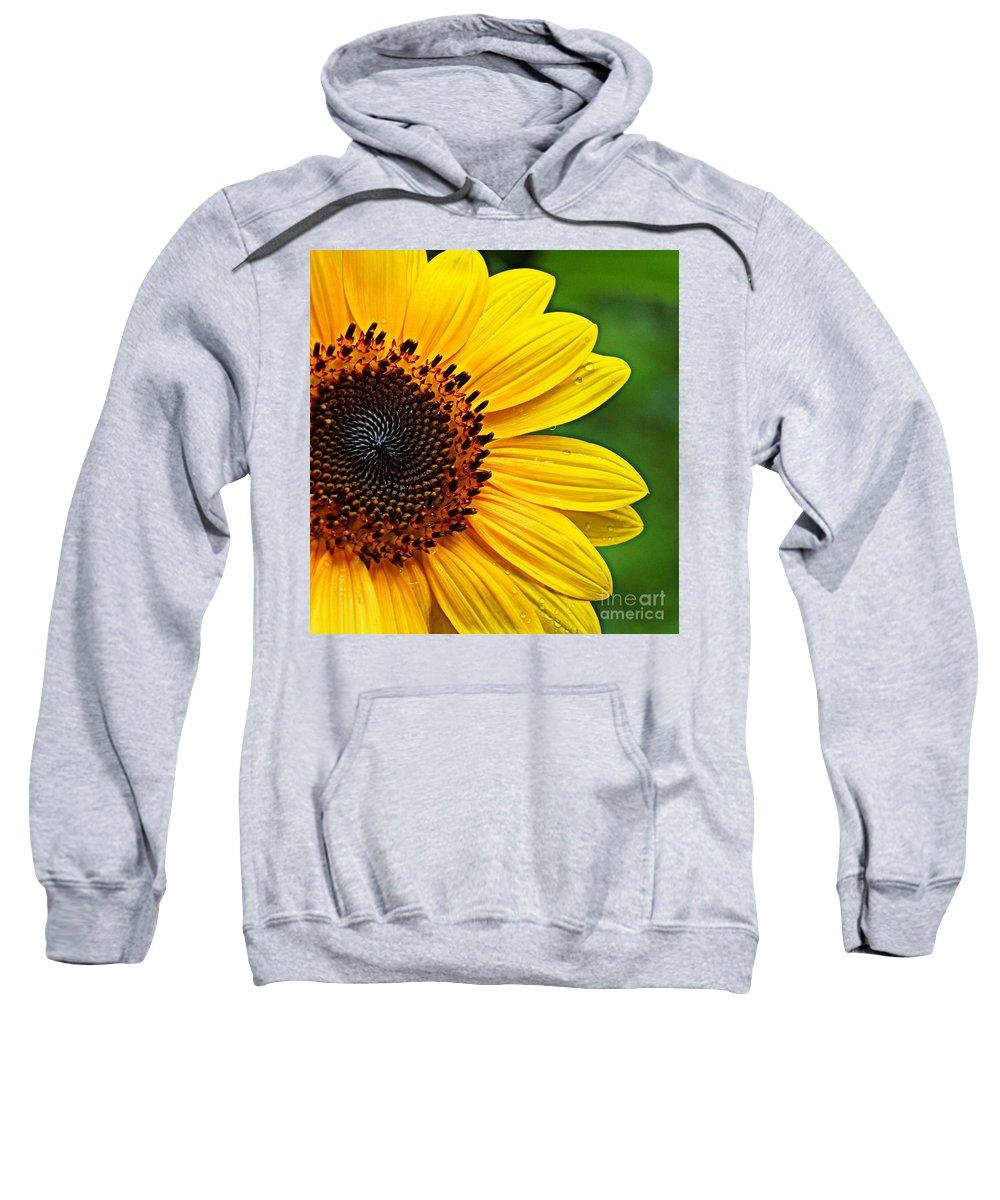 Sunflower Sweatshirt featuring the photograph Sunflower Macro by Paul Wilford