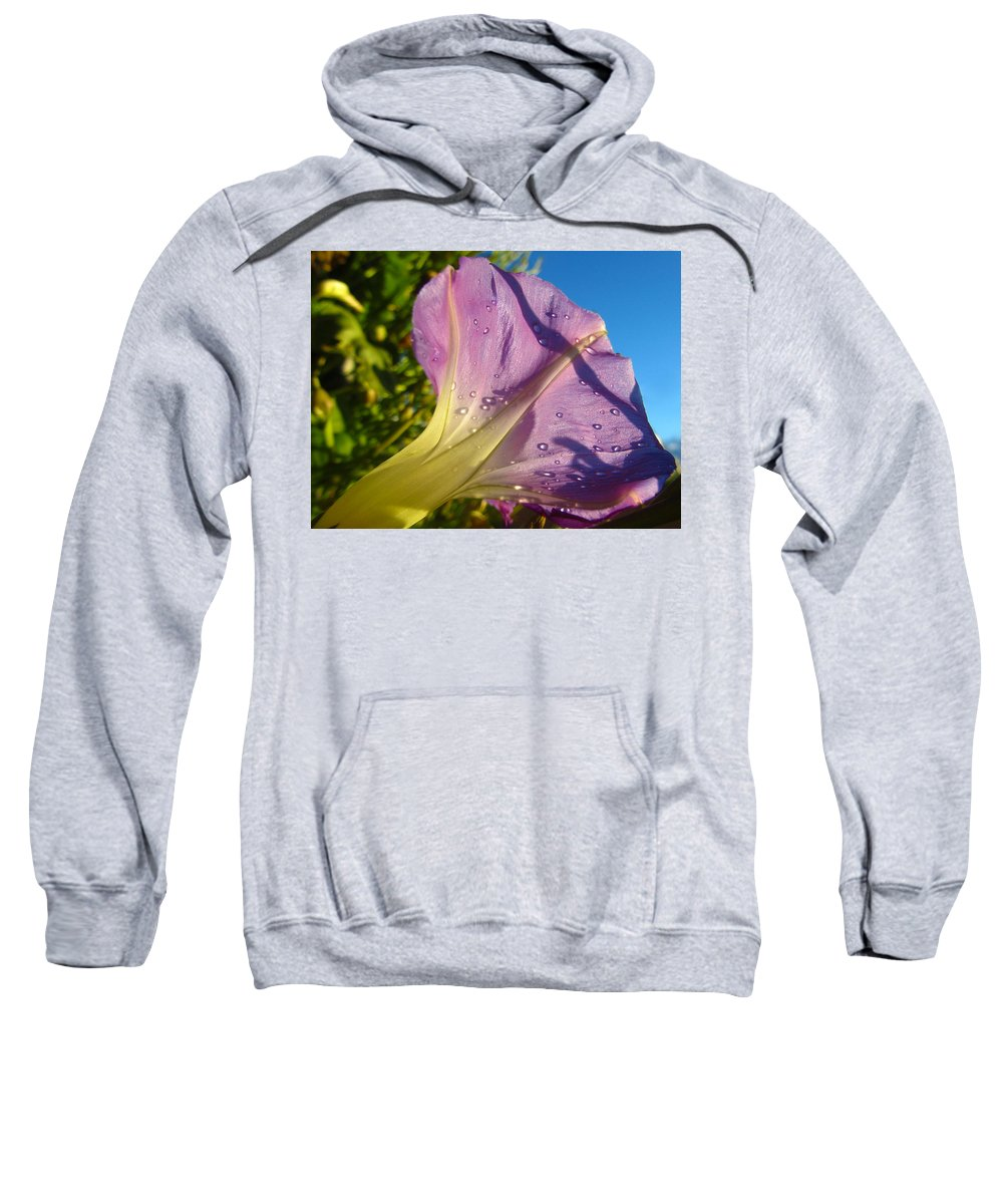 Morning Glory Sweatshirt featuring the photograph Sunlit Morning Glory by Dale Jackson