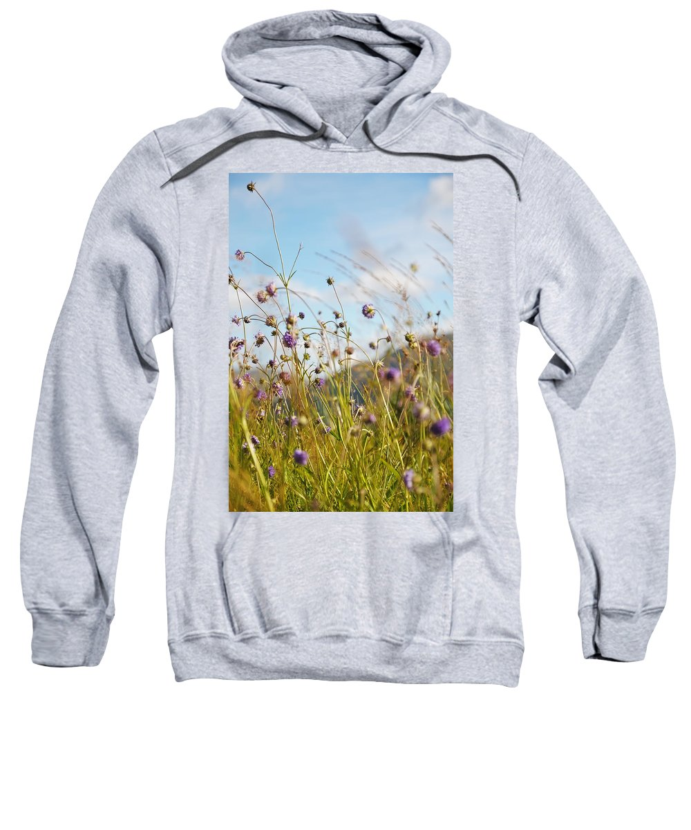 Scotland Sweatshirt featuring the photograph Sunny Bliss. Rest And Be Thankful. Scotland by Jenny Rainbow