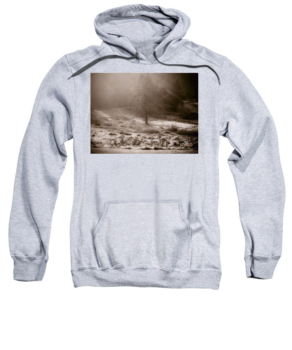 Sun Sweatshirt featuring the photograph Sunny Frosty Douglassville by Trish Tritz