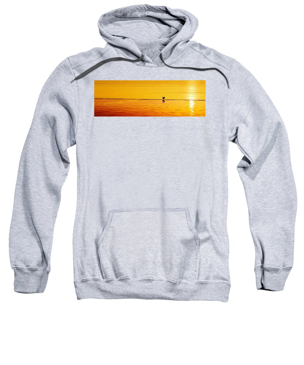 Aboretum Sweatshirt featuring the photograph Sunset Silhouette by Darryl Dalton