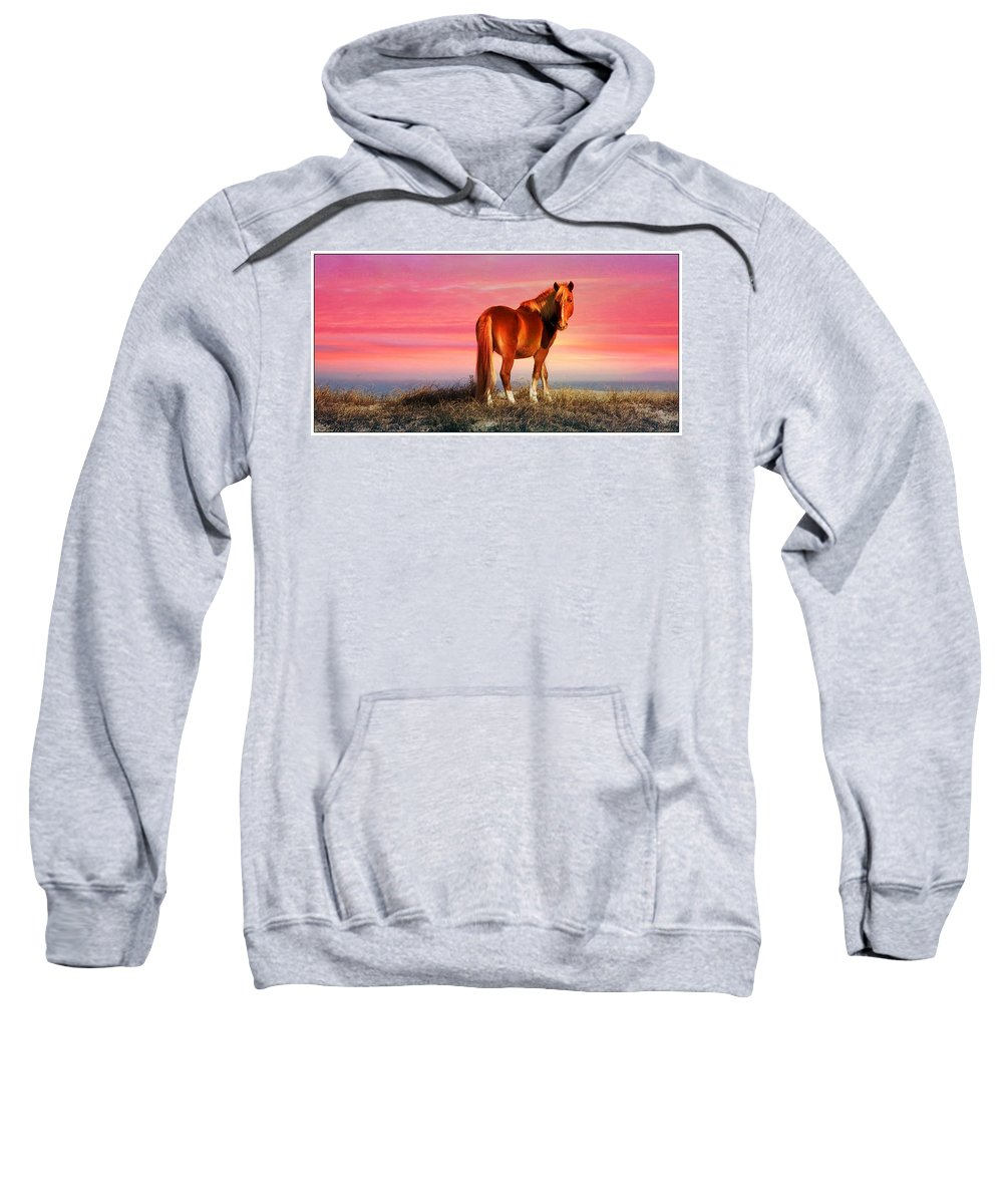 Wild Horse At Sunset Sweatshirt featuring the photograph Sunset Wild by Alice Gipson