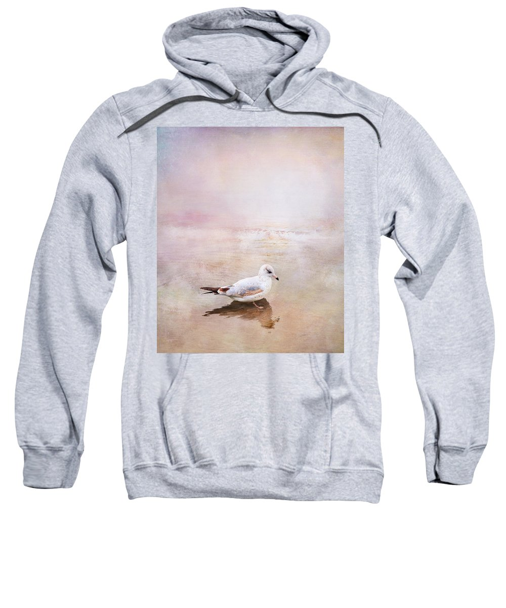 Sunset Sweatshirt featuring the photograph Sunset With Young Seagull by Theresa Tahara