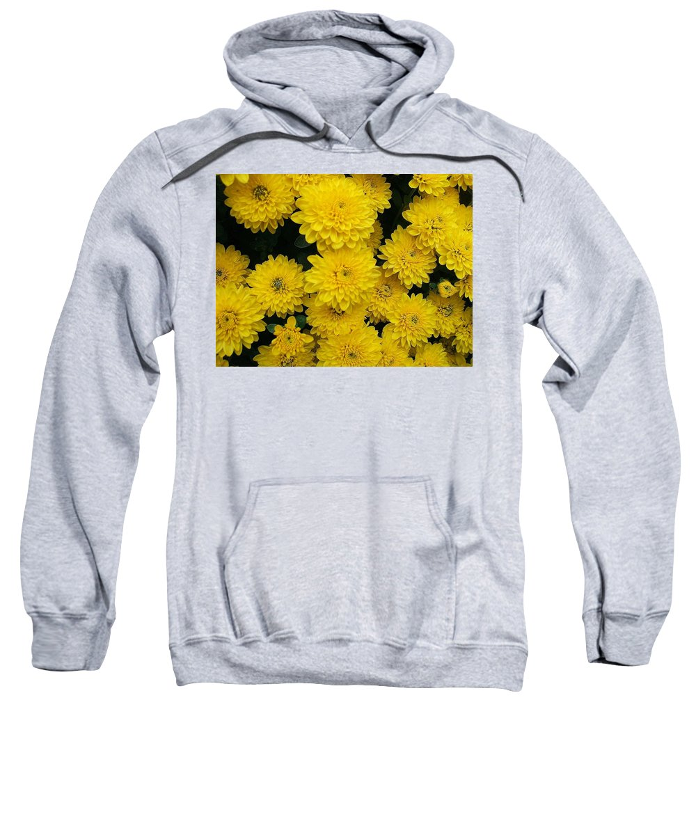 Floral Sweatshirt featuring the photograph Sunshine by Jo Dawkins