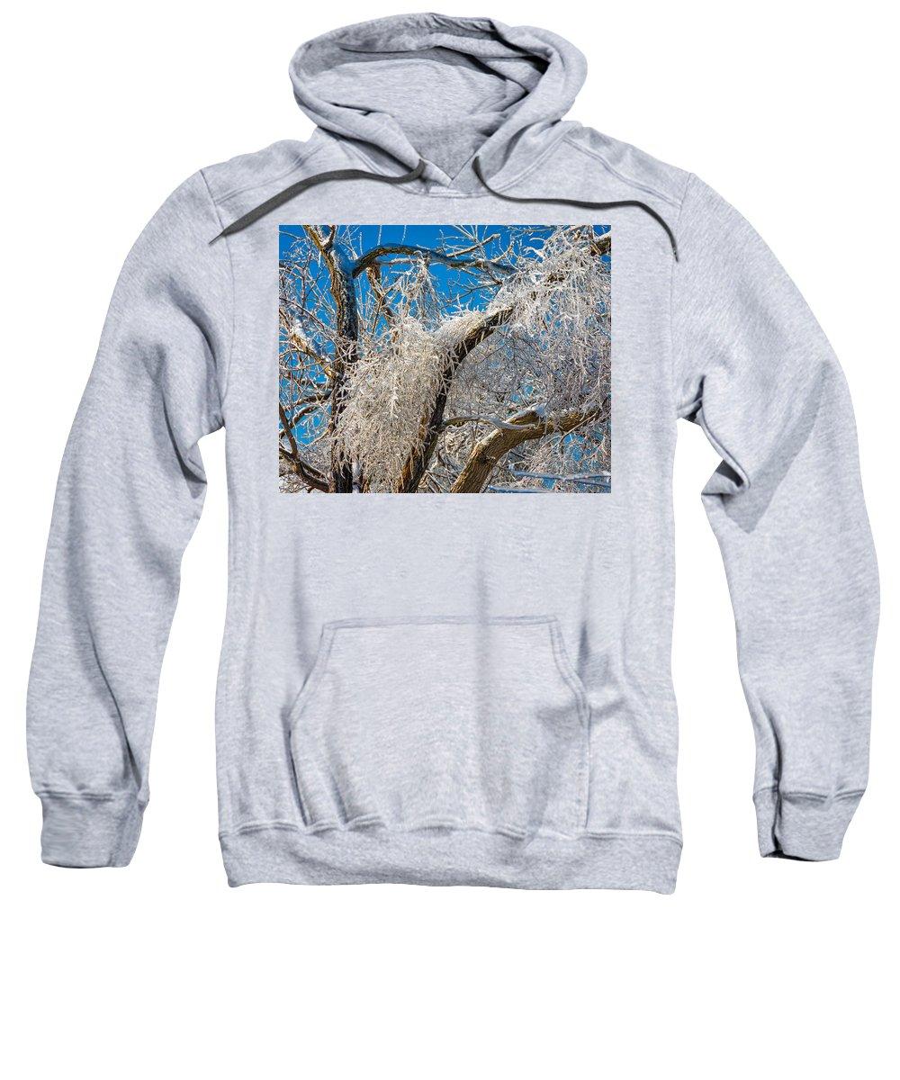 Steve Harrington Sweatshirt featuring the photograph Survivor 2 by Steve Harrington
