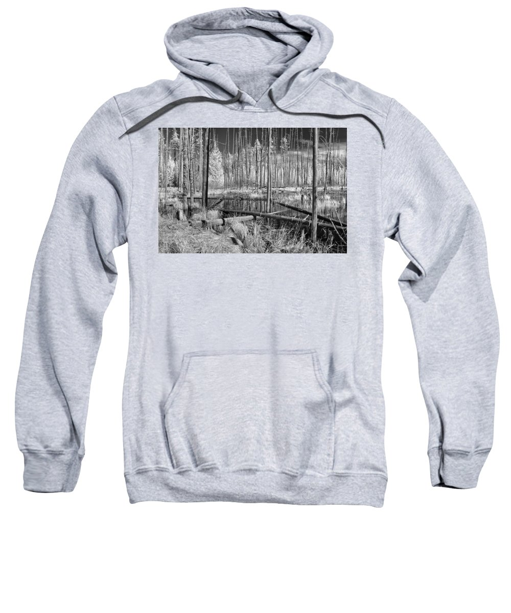 Big Springs Sweatshirt featuring the photograph Swamp Trees by Cindy Archbell