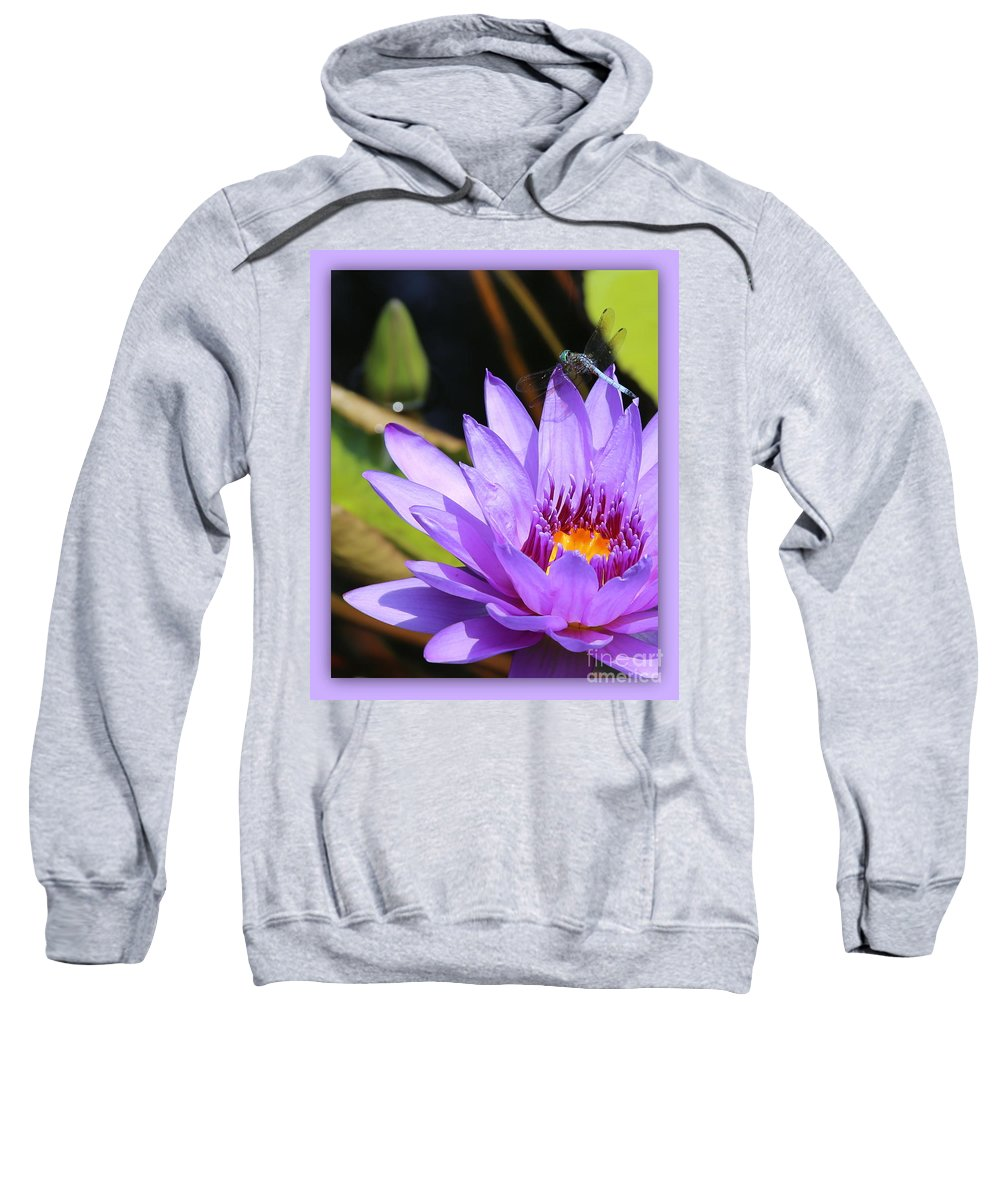 Dragonfly Sweatshirt featuring the photograph Sweet Dragonfly On Purple Water Lily by Carol Groenen