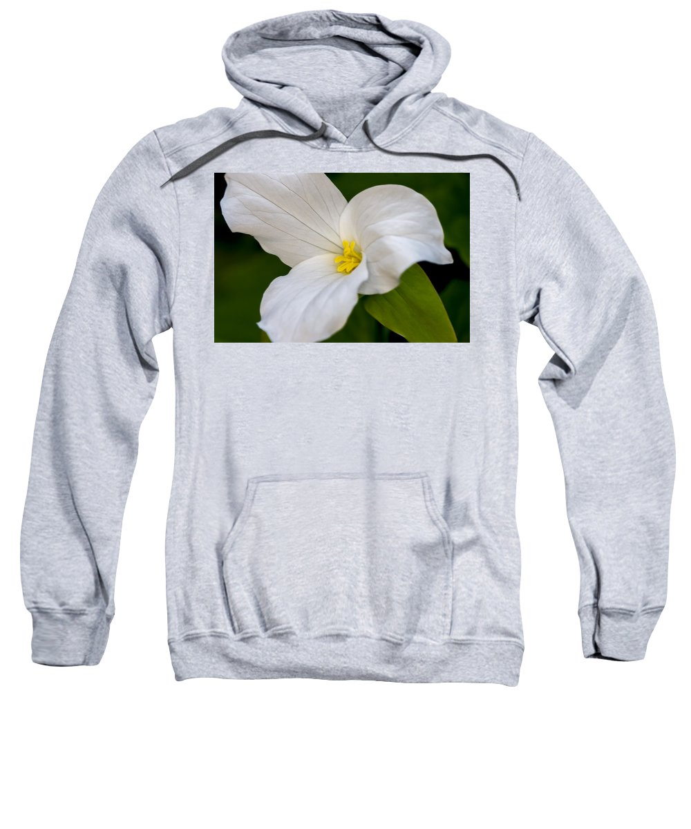 White Sweatshirt featuring the photograph Sweet White Trillium 5 by Jack R Perry
