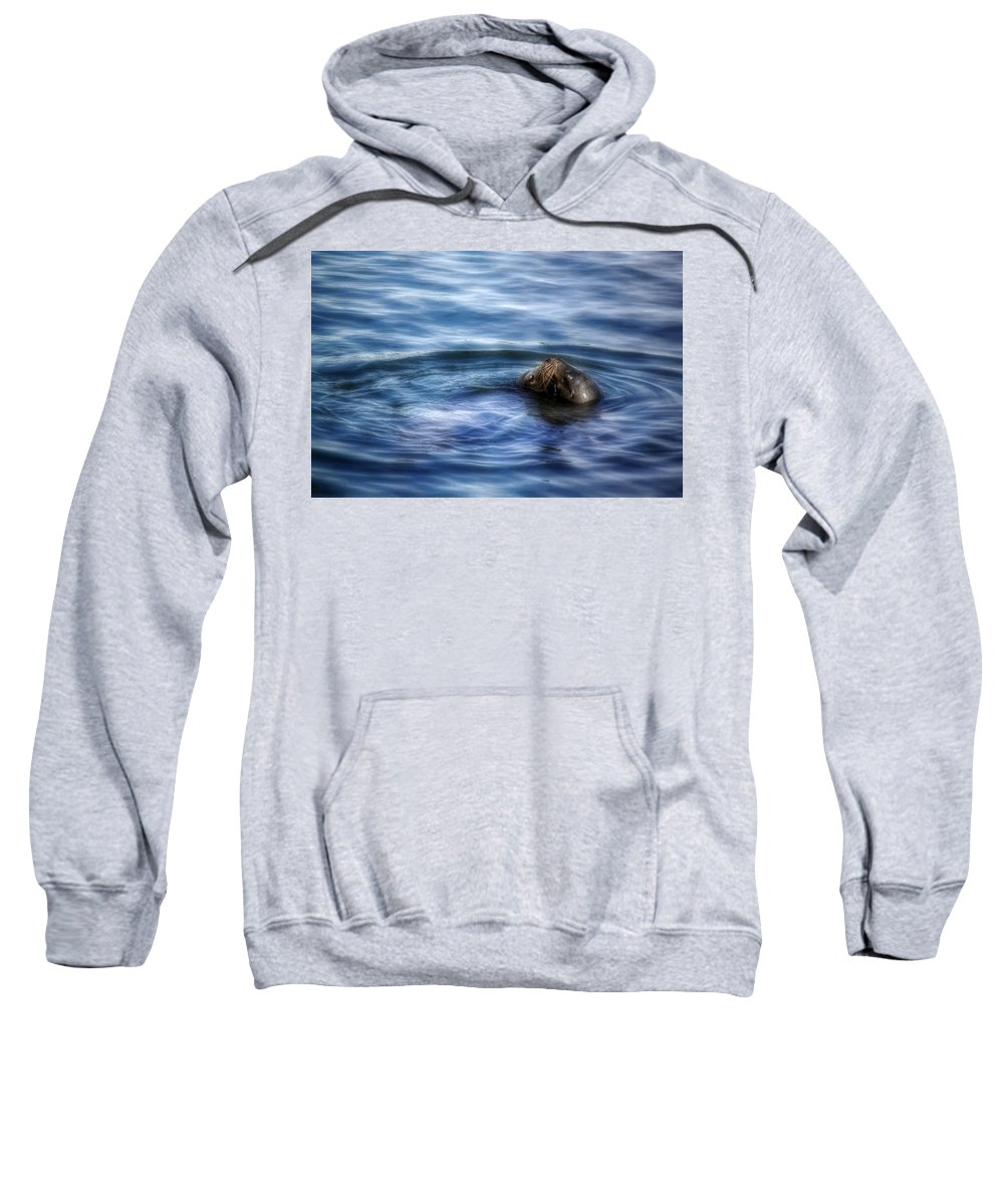 Seals. Seal Sweatshirt featuring the photograph Tender Kisses by Melanie Lankford Photography