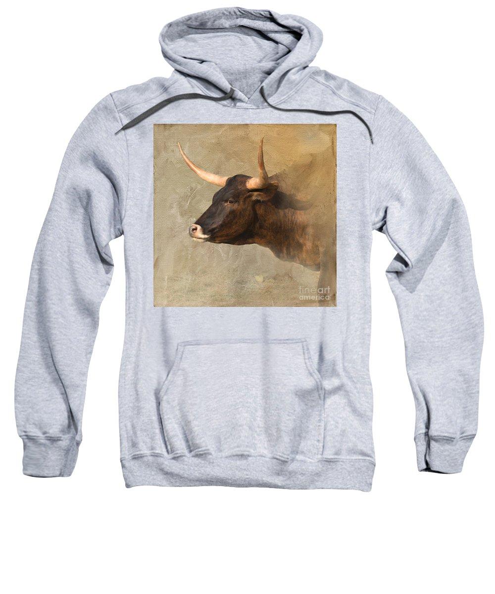 Texas Longhorn Sweatshirt featuring the photograph Texas Longhorn # 3 by Betty LaRue