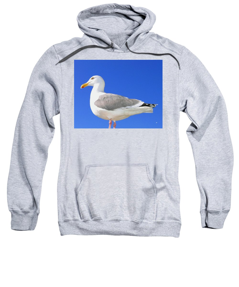 The Admiral Sweatshirt featuring the photograph The Admiral by Will Borden