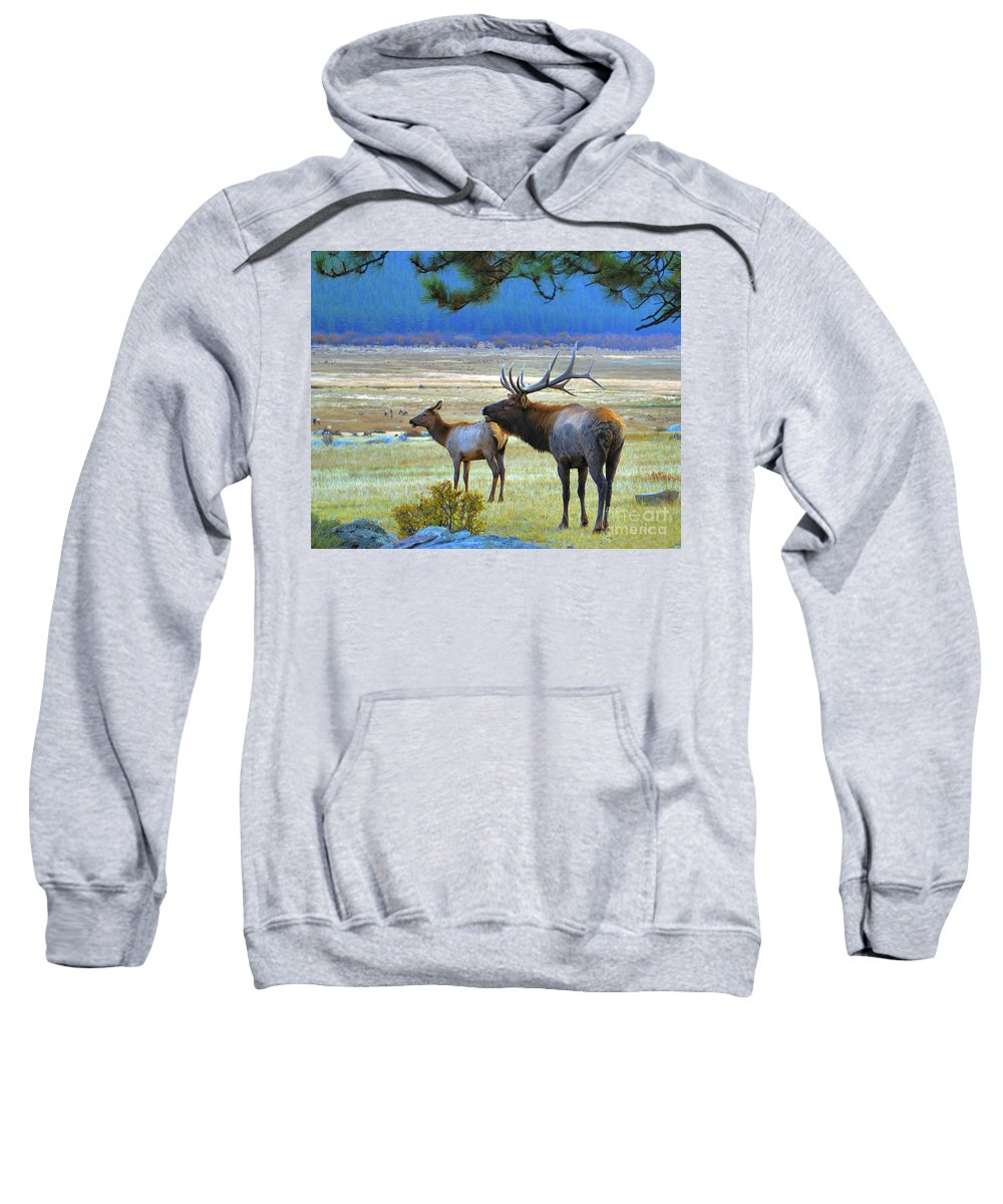 Elk Sweatshirt featuring the photograph The Call by Kelly Black