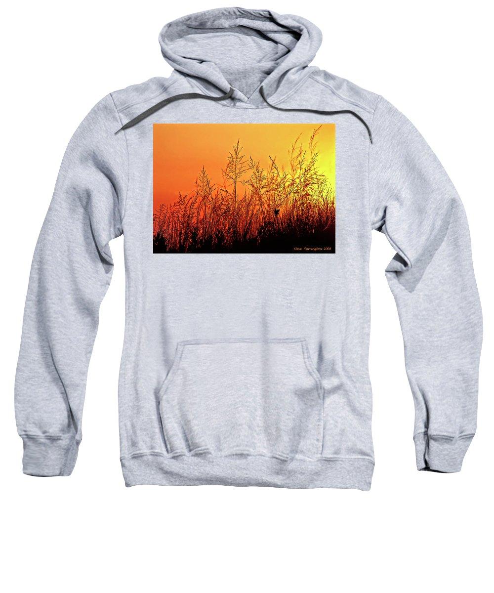 Sauble Beach Sweatshirt featuring the photograph The Dunes by Steve Harrington