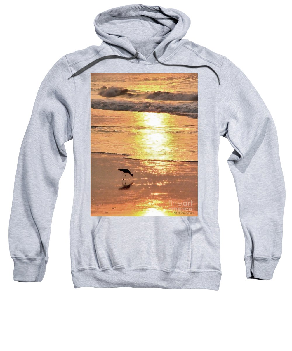 Landscape Sweatshirt featuring the photograph The Early Bird by Todd Blanchard