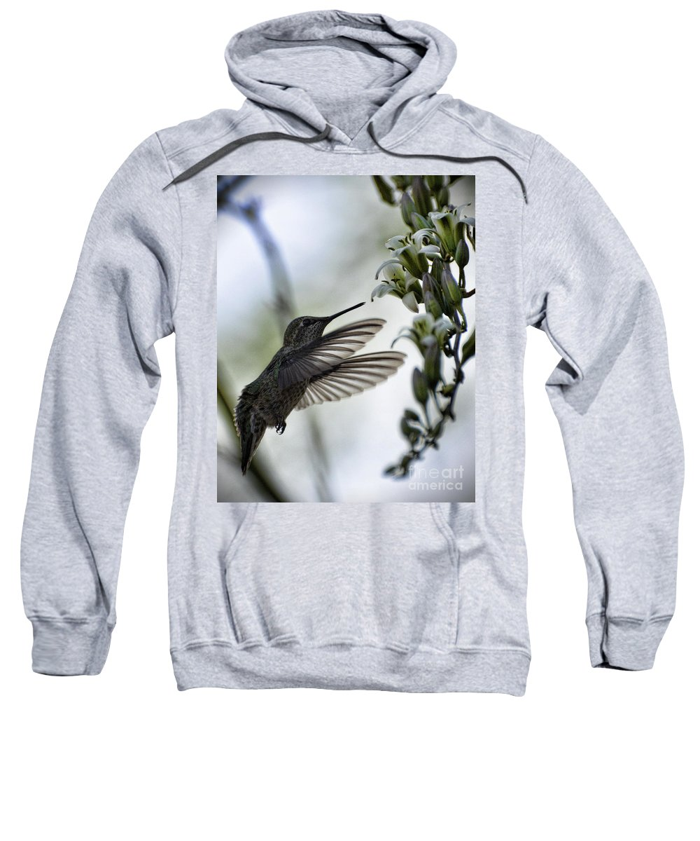Anna's Hummingbird Sweatshirt featuring the photograph The Hummingbird by Saija Lehtonen