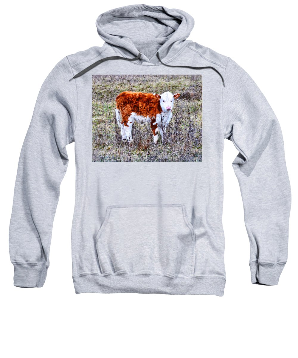 The Little Cow Sweatshirt featuring the photograph The Little Cow by Bill Cannon