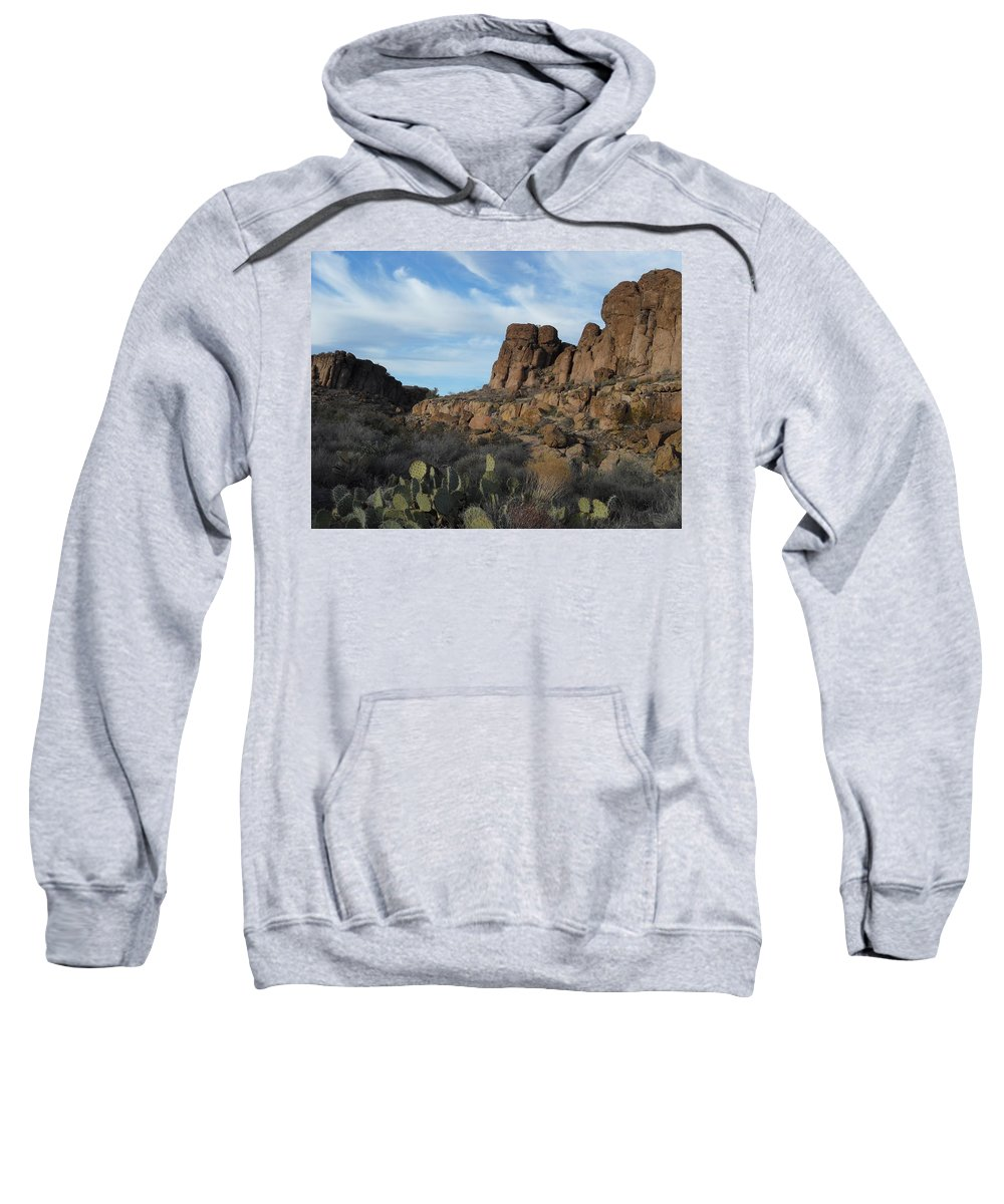 Landscape Sweatshirt featuring the photograph The Living Desert Of Arizona by James Welch
