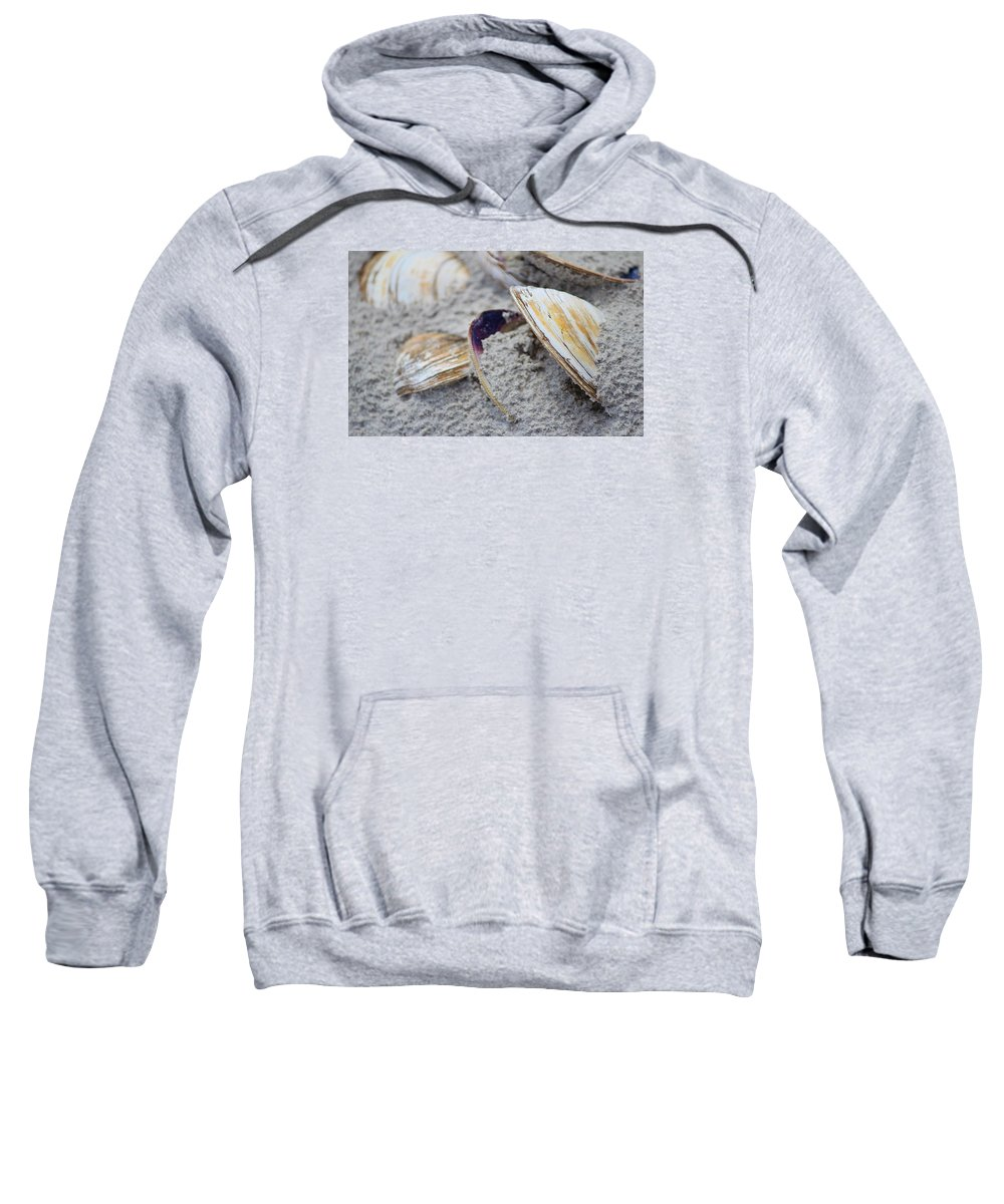 Shell Sweatshirt featuring the photograph Shells In The Sand by Cynthia Guinn