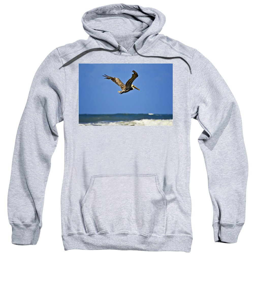 Pelican Sweatshirt featuring the photograph The Pelican And The Sea by DigiArt Diaries by Vicky B Fuller