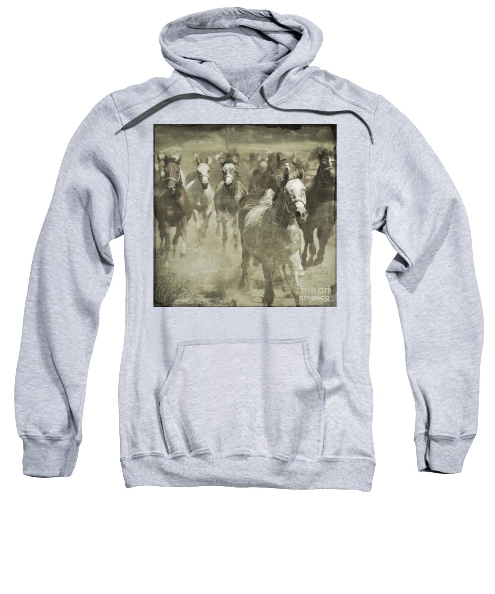 Horse Sweatshirt featuring the photograph The Run For Freedom by Angel Ciesniarska