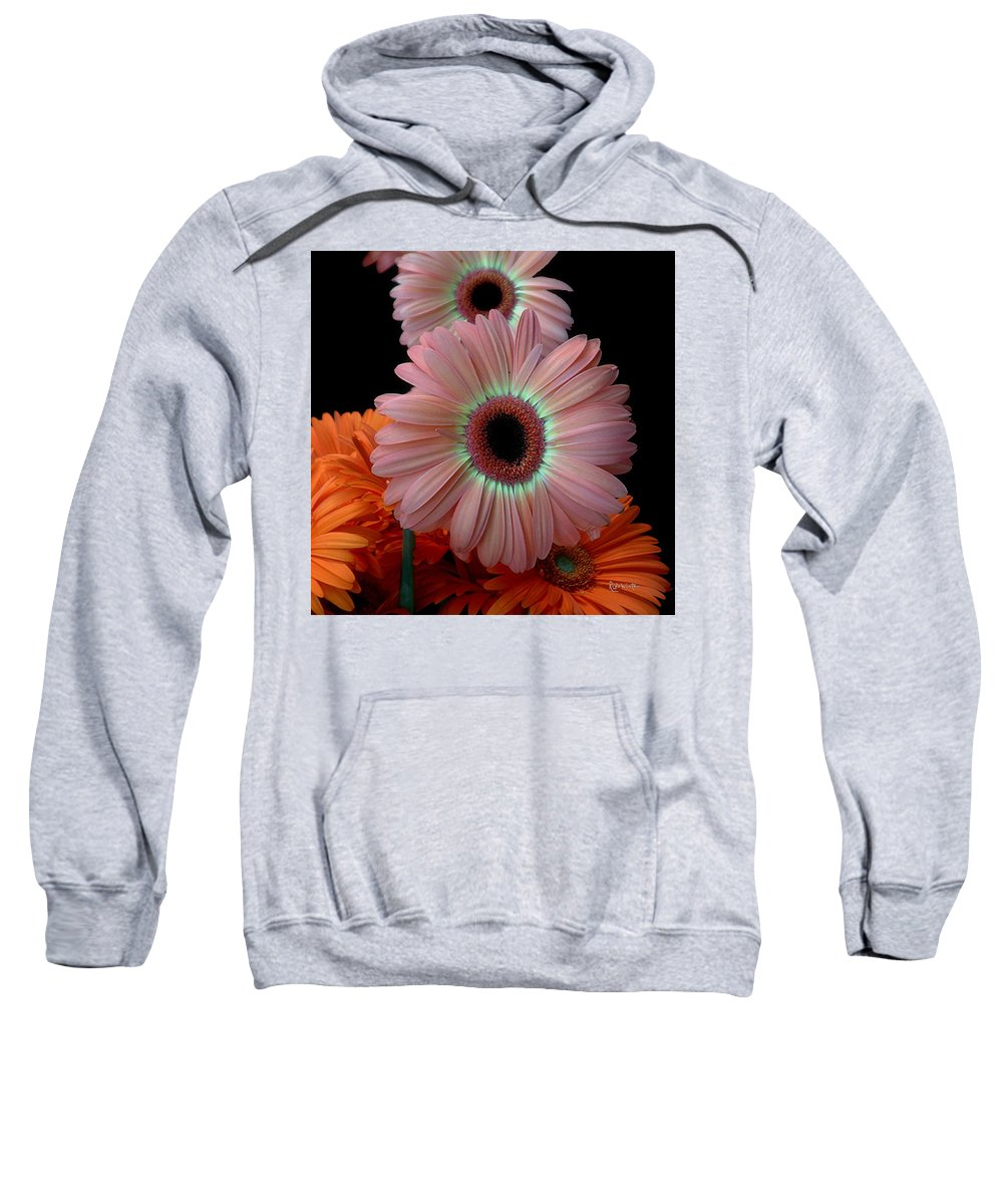 Gerberas Sweatshirt featuring the photograph Third Place by RC deWinter