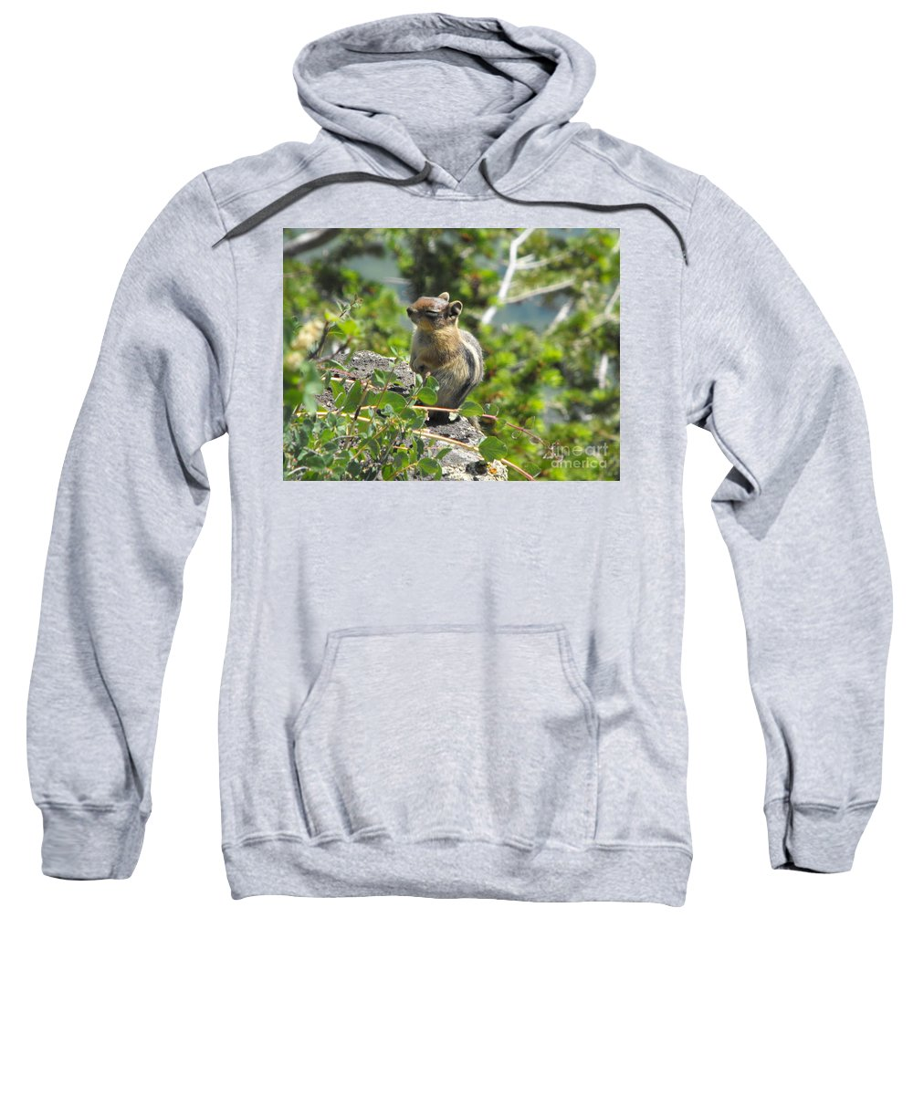 Animals Sweatshirt featuring the photograph This Is The Life by Brandi Maher