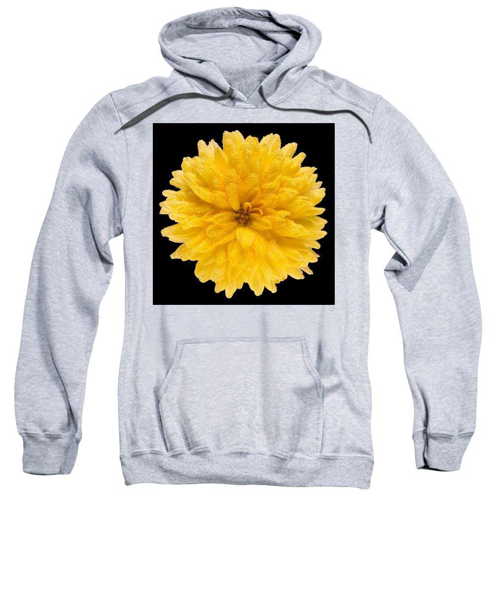 Flower Sweatshirt featuring the photograph This Yellow Chrysanthemum by Steve Gadomski