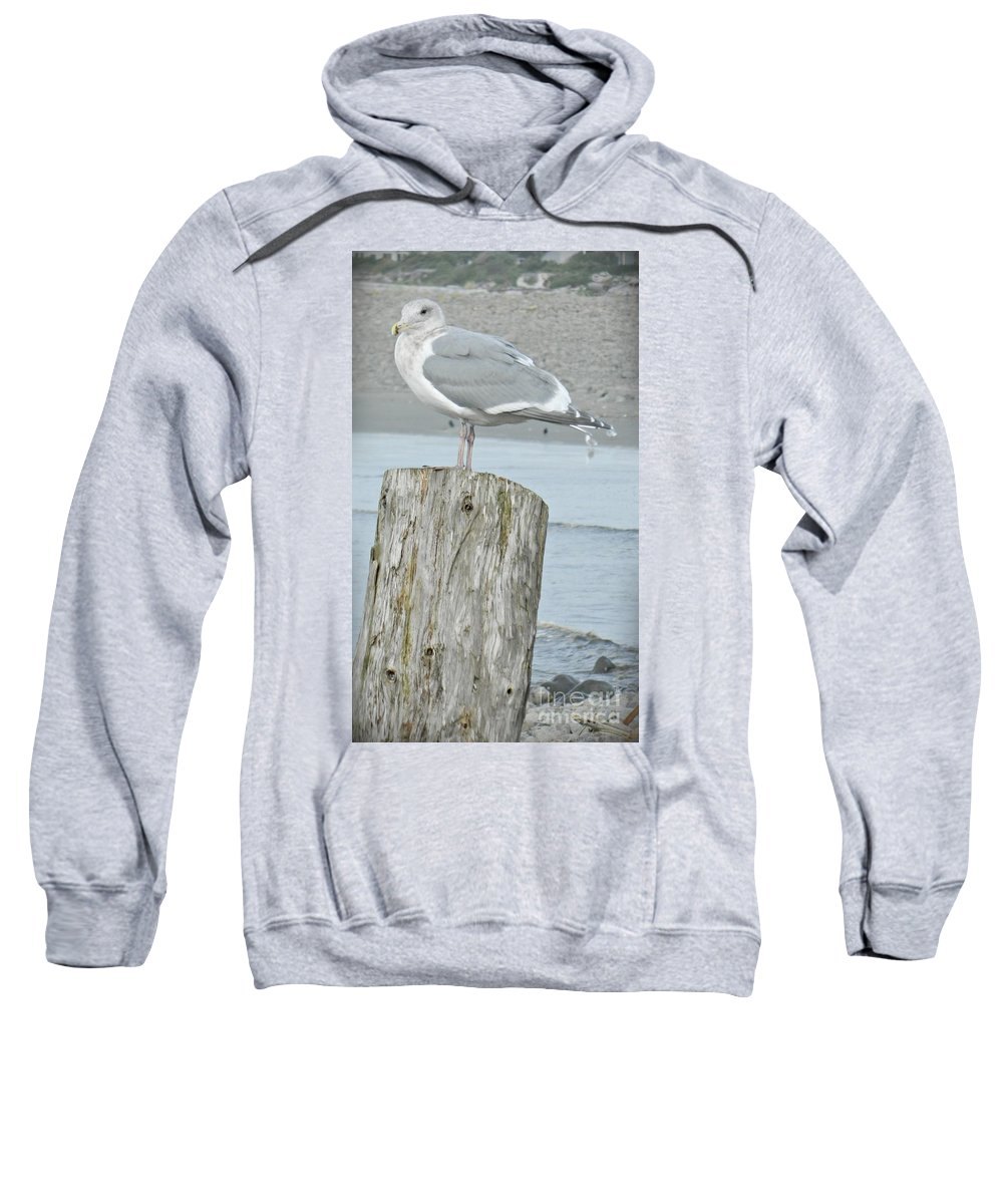 Tide Watcher Sweatshirt featuring the photograph Tide Watcher by Chalet Roome-Rigdon