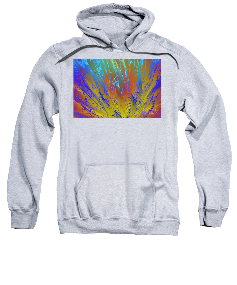 Queen Victoria's Agave Sweatshirt featuring the photograph Tie Dye Agave by Diane Macdonald