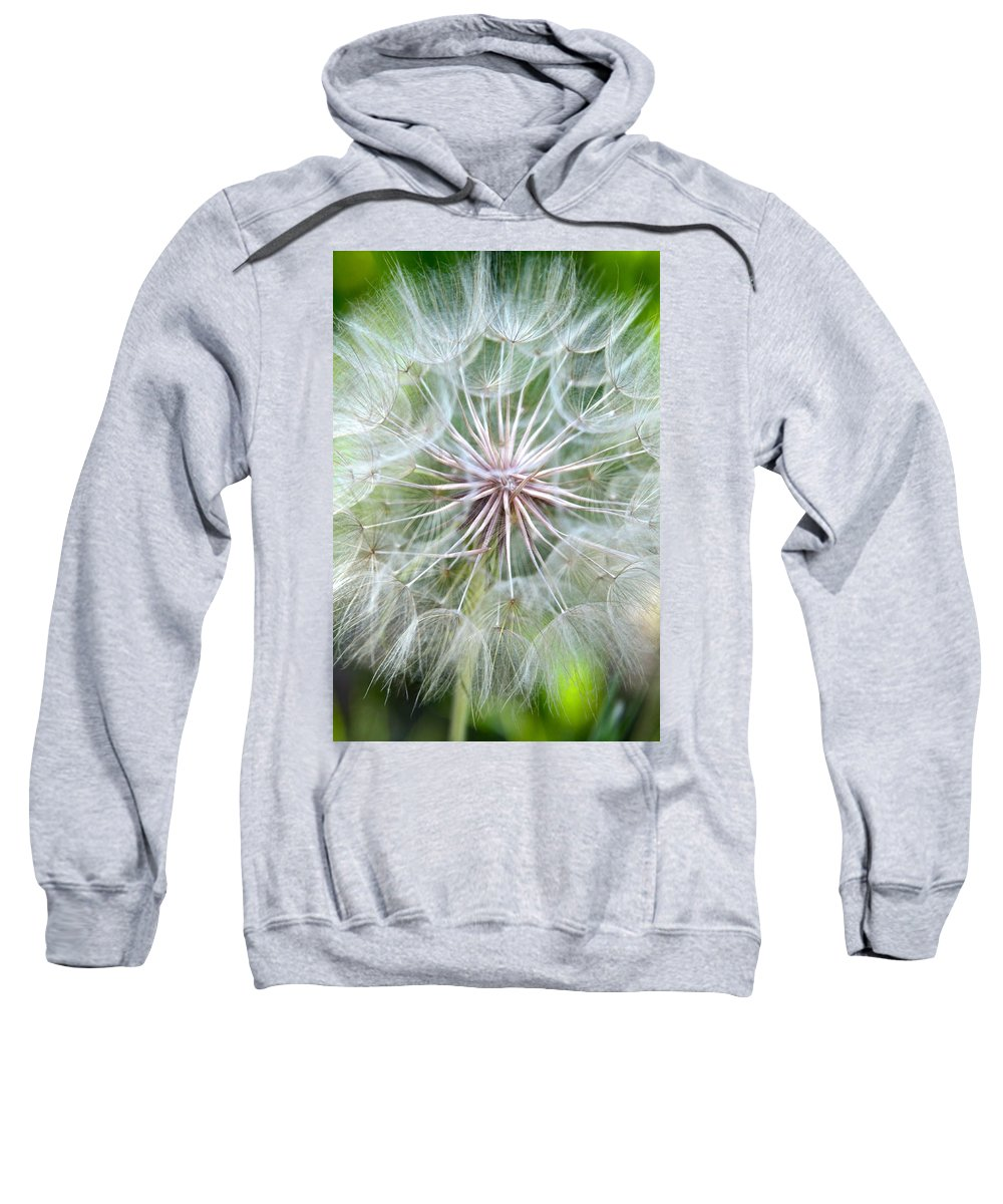 Seed Sweatshirt featuring the photograph Time To Fly by Karon Melillo DeVega