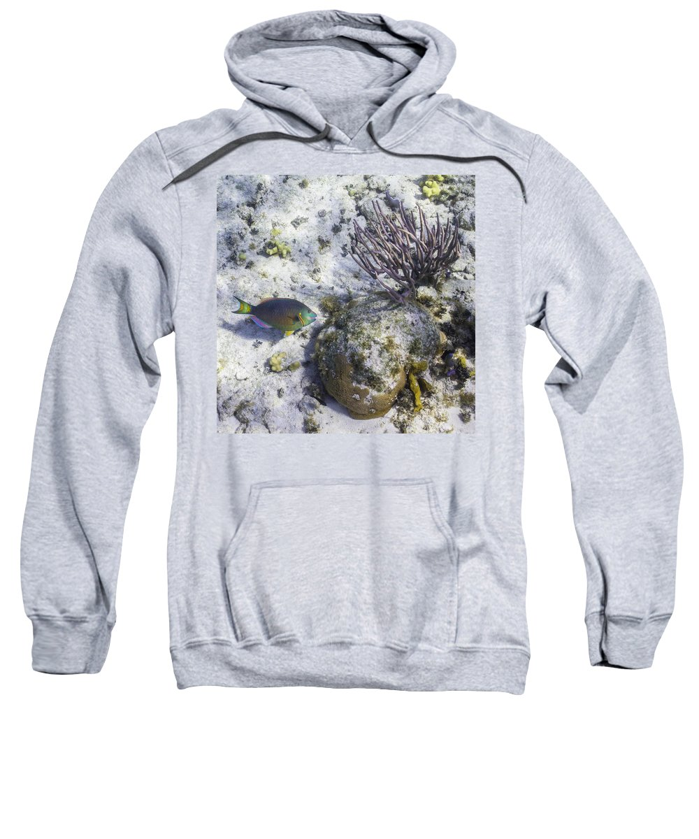 Ocean Sweatshirt featuring the photograph Time To Make The Sand by Lynne Browne