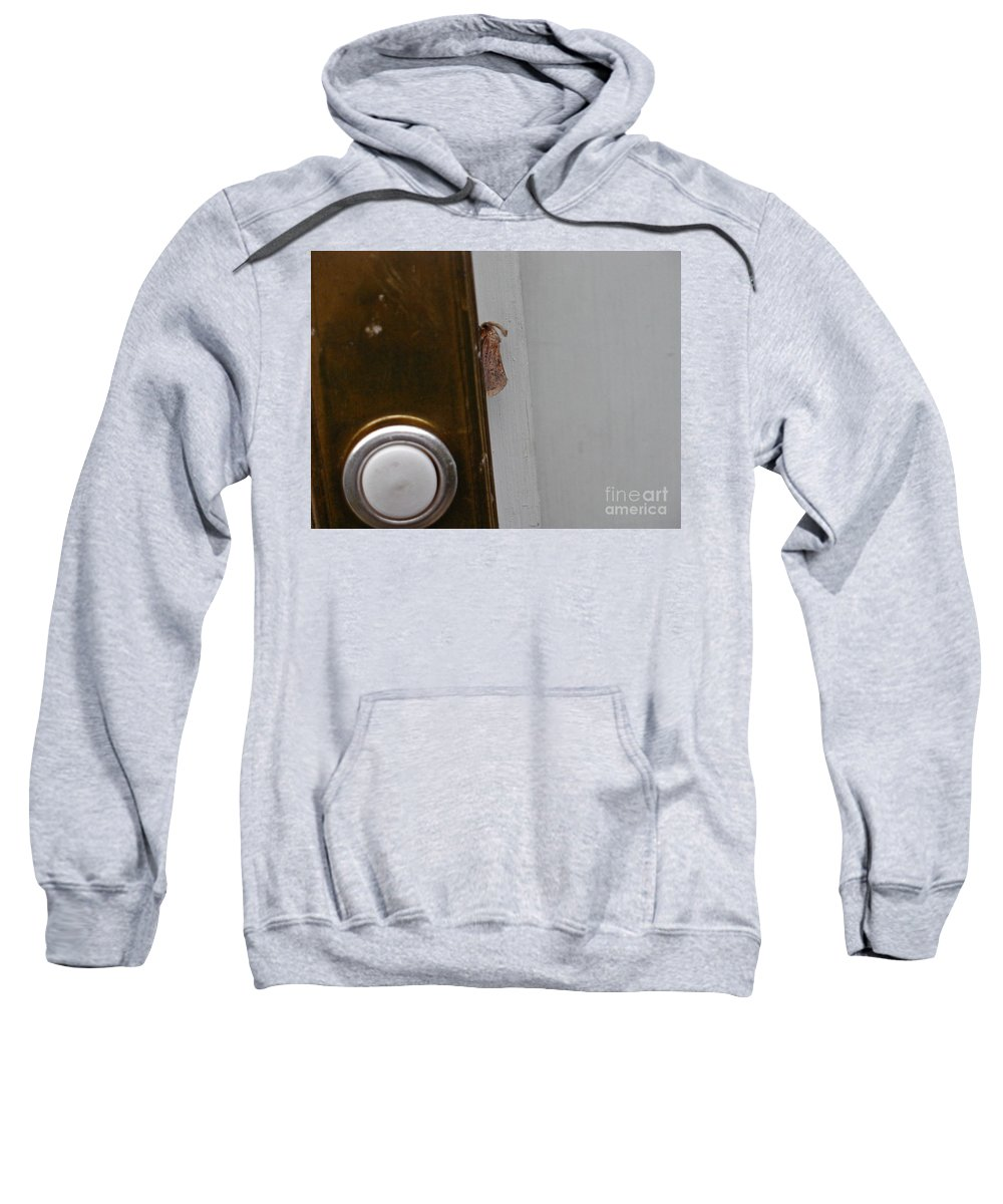 Moths Sweatshirt featuring the photograph Tiny Doorbell Moth by Christopher Plummer