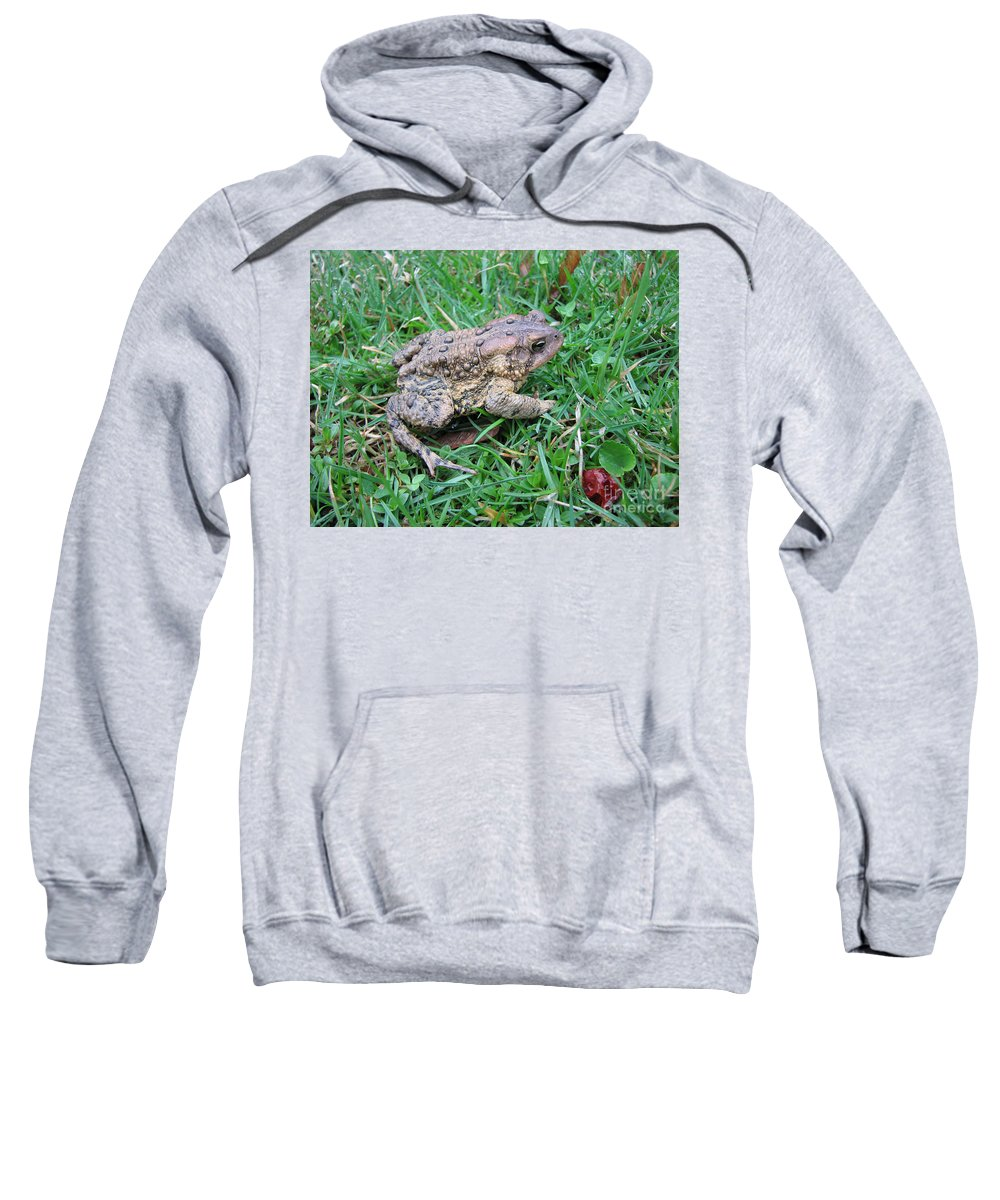 Toad Sweatshirt featuring the photograph Toad by Stacey May