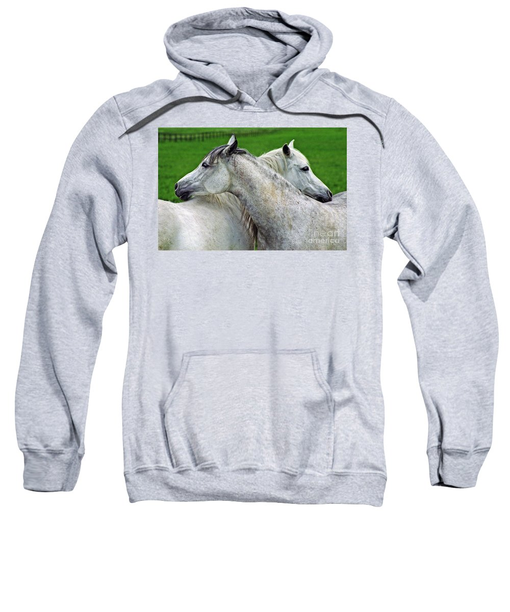 Horse Sweatshirt featuring the photograph Together Forever by Angel Ciesniarska