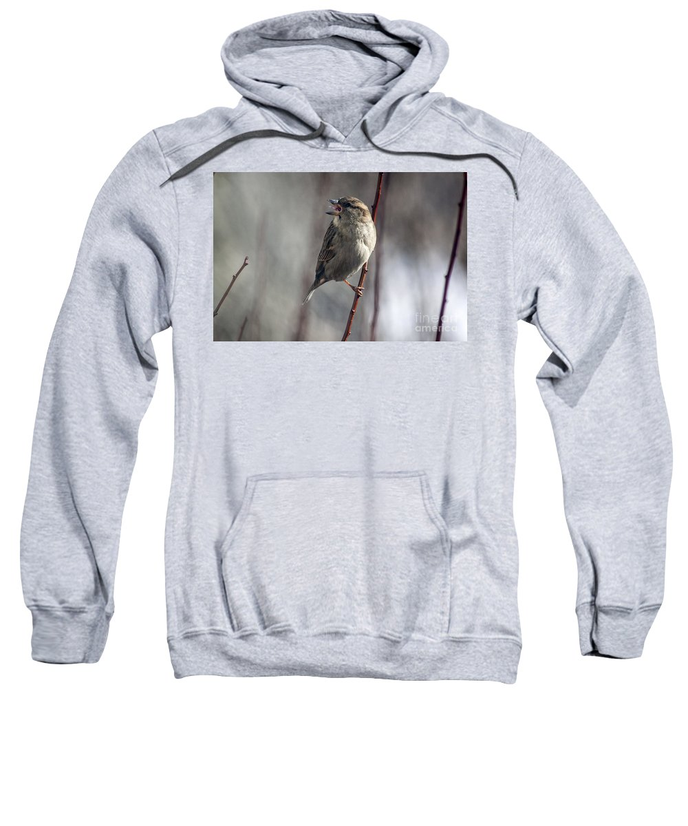 Sparrow Sweatshirt featuring the photograph Tongue Of The Sparrow by Janice Pariza