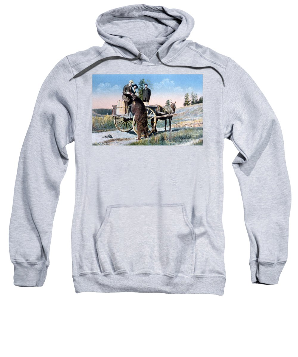History Sweatshirt featuring the photograph Tourist Feeding Bear Yellowstone Np by NPS Photo Frank J Haynes