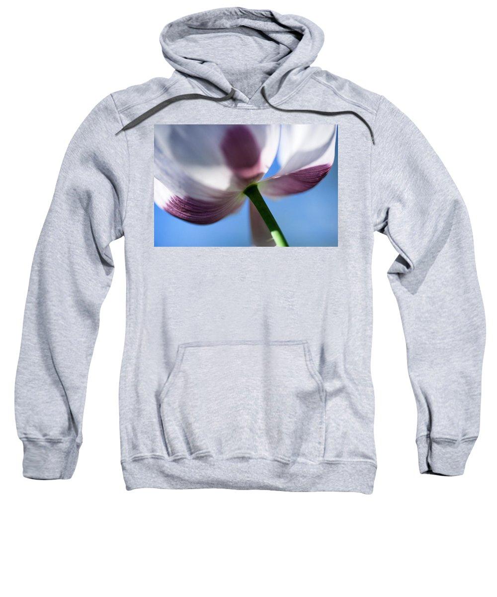 Poppy Sweatshirt featuring the photograph Towards The Blue Sky by Jenny Rainbow
